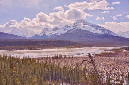 Landscape of Howse Pass in the Canadian Rocky Mountains.