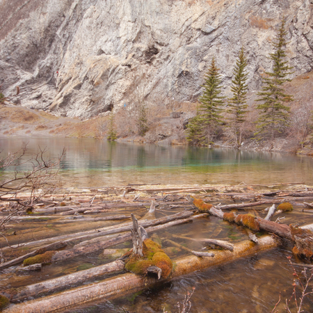 Landscape of Grassi Lake with Deadwood in the foreground, Kananaskis, Alberta, Canada.