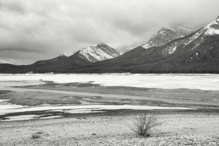 Black and while landscape of the Spray Lake Reservoir in winter.