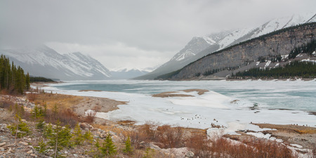 Icy Spray Lake landscape with a colourful foreground, Kananaskis, Alberta