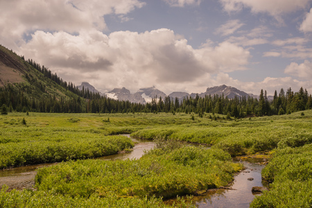 Landscape of a creek running through a meadow with the Rocky Mountains in the background and a cloudy blue sky, Kananaskis, Alberta.