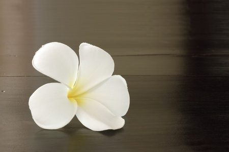 Plumeria on brown spa table. photo