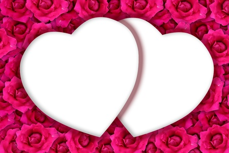 Two hearth space on pink rose  photo