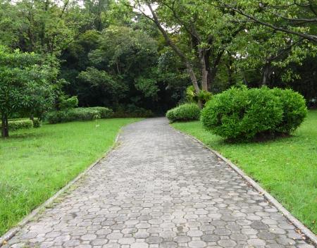 Garden path walk in public park to forest. Stock Photo