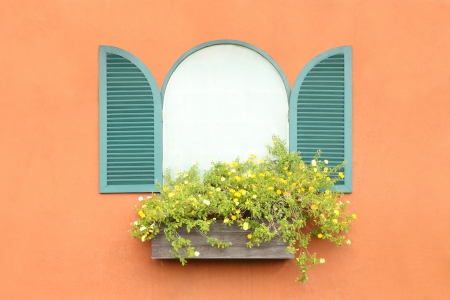 Old arched green window opened on orange wall. photo