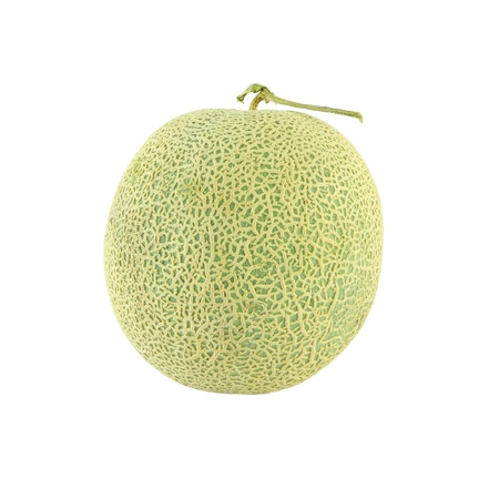 Single round Japanese melon on white background. Stock Photo