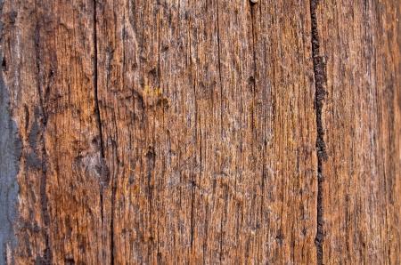 old wood background Stock Photo - 16732808