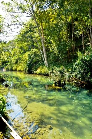 pond in autumn Stock Photo - 17115072