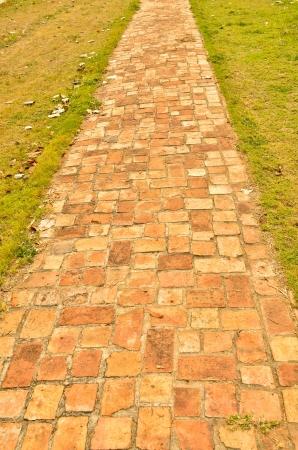 Straight brick path cuts through bright green grass  Stock Photo