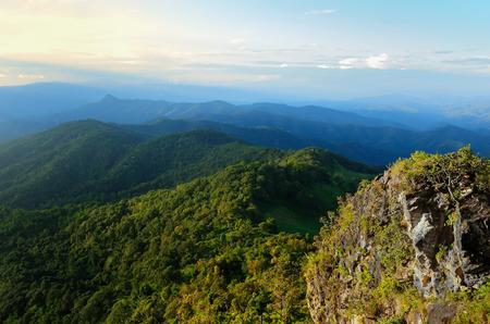 tropical rainforest,Khao Yai National Park Thailand