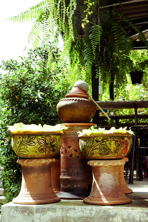 clay jars with green leaf in garden