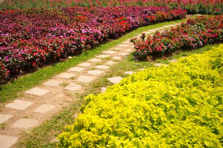 Bright summer garden planted alongside winding tile walkway Stock Photo
