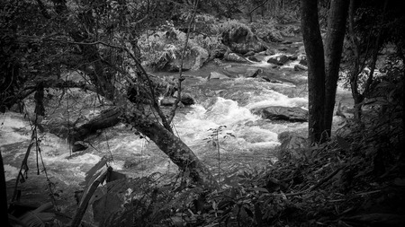 Mountain stream and Waterfall