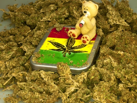 mariuana as a background with a smoking bear