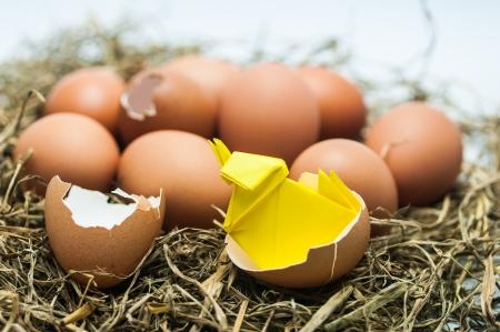 huevo eclosionado con el polluelo de papel bebé
