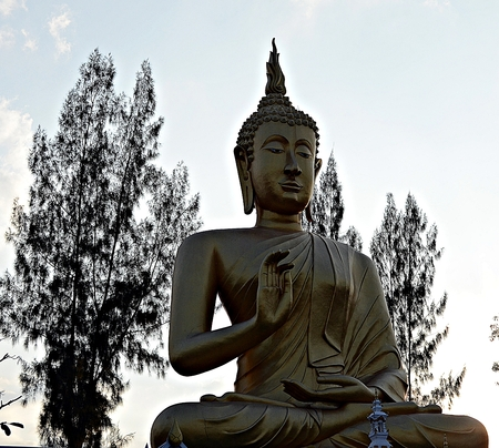principles: The principles of the Buddha is the anchor of the Buddhist mind.