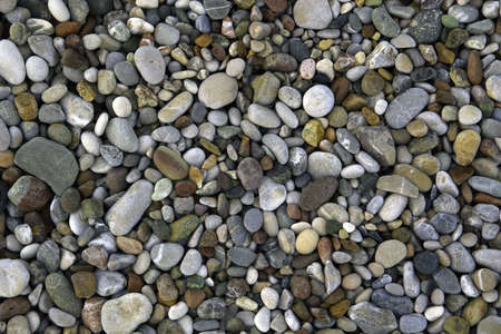 Grey and colourful pebbles on sea shore photo