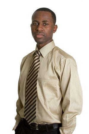 Serious Businessman Stock Photo - 2981027