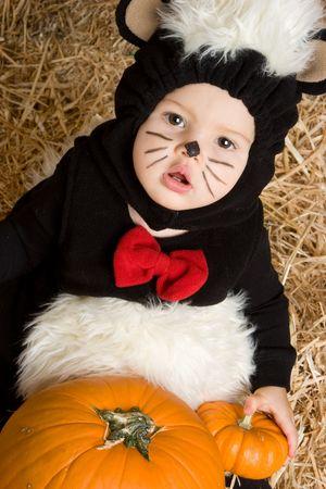 stinktier: Baby Skunk LANG_EVOIMAGES
