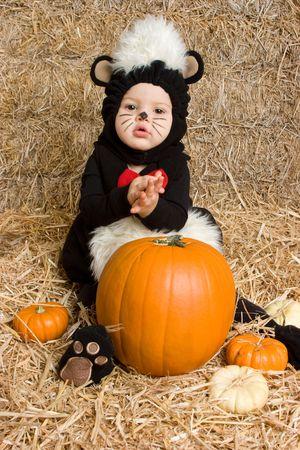 Halloween Skunk Stok Fotoğraf