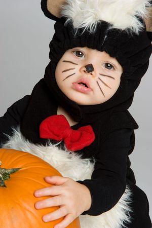 zorrillo: Skunk lindo bebé