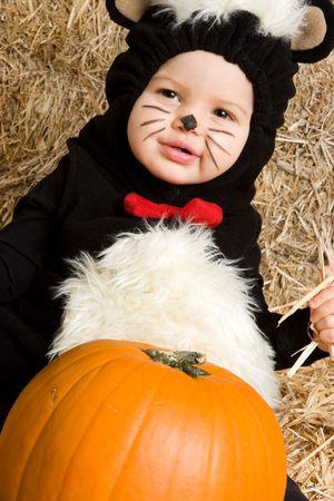 笑みを浮かべて赤ちゃんスカンク 写真素材
