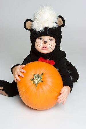 Pumpkin Baby Stock Photo - 3769103