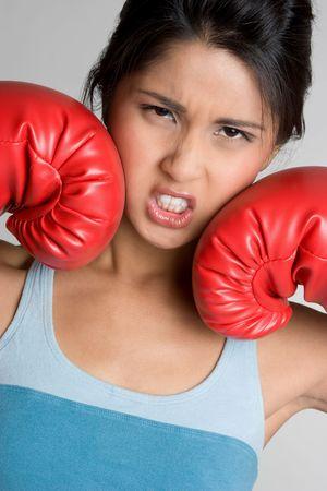 Asian Boxer 版權商用圖片
