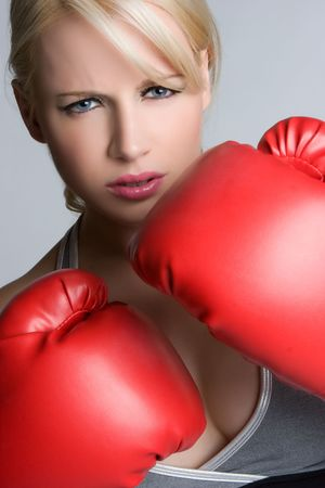 Blond Boxer Stock Photo - 5066562