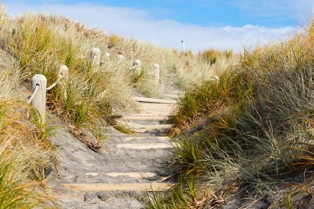 beach access: Sandy beach access path with steps