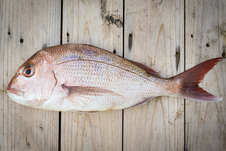 Whole raw snapper fish on wood background Stock Photo