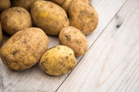 unpeeled: Unpeeled dirty white raw organic potatoes