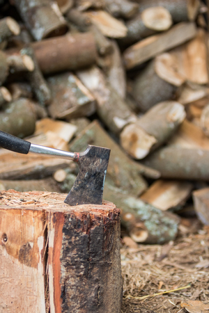hatchet: Hatchet in stump with firewood