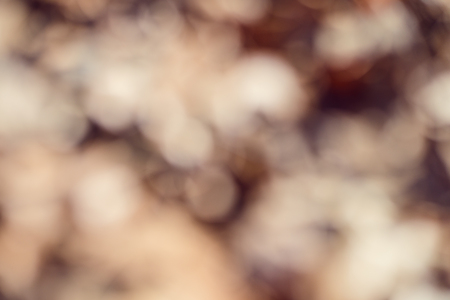 Brown abstract blur bokeh background