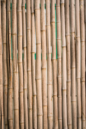 Natural bamboo fence background pattern
