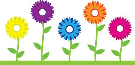 flor morada: Coloridas flores  Vectores