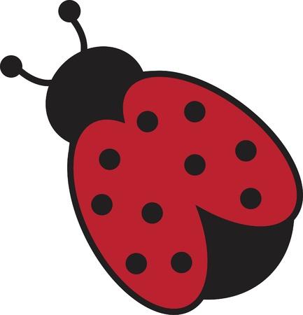 ladybirds: Ladybug
