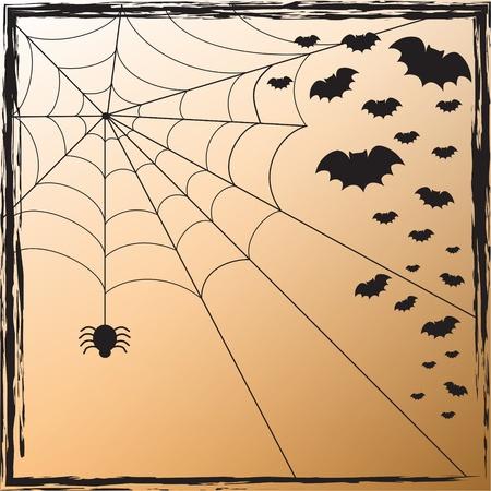 Spider Web und Fledermäuse Standard-Bild - 10446796