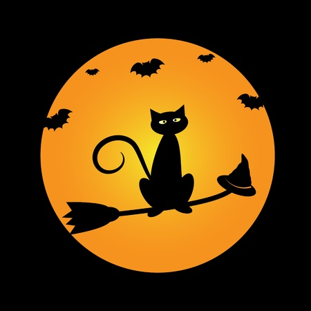 Halloween Cat on Broom Illustration