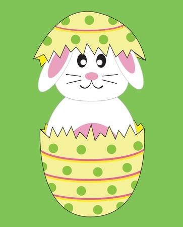 Bunny Rabbit in Easter Egg Vector