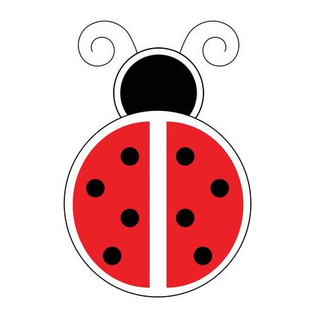 ladybug: Ladybug