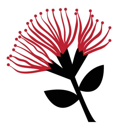 Pohutukawa Flower Illustration