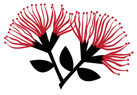 Flores de Pohutukawa