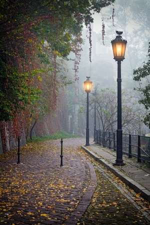 The mysterious alleyway in foggy autumn time with lighted lamps photo