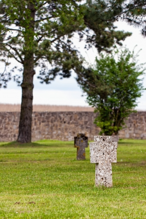 tortured: Crosses on the graves of tortured prisoners from the concentration camp