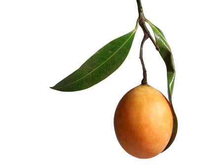 Exotic Thai Fruit. Maprang, Marian plum, Gandaria, Marian mango, Plum mango. Isolated on white. photo