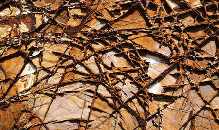abstract natural texture cracked rock. Good natural background Stock Photo