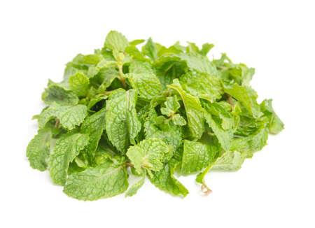 three fresh mint leaves isolated on white background  Studio macro Stock Photo
