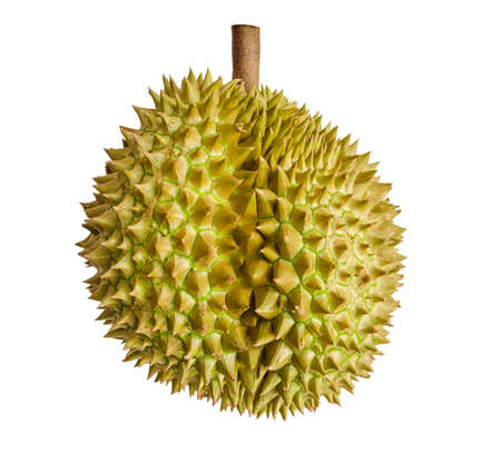 Durian, the king of fruits in South East Asia on background