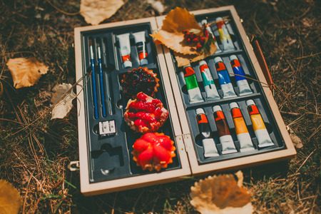 acryl: Composition of acryl paint tubes in wooden box with tartalets. Color pallet and autumn leaves. Stock Photo